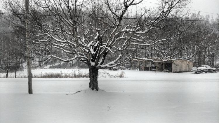 Pennsylvania December 2017 - weather - amberpocalypse | ello