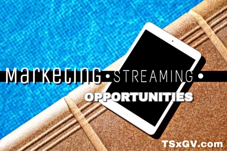 tsxgv.com .... Link bio. TSxGV - codeen_martin | ello