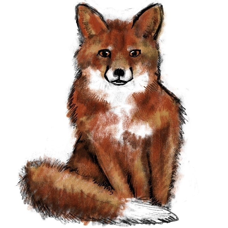 Foxy - wildlife, art, illustration - reneeleigh   ello