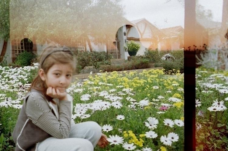 Daisies love - 35mm, doubleexposure - ayah_daveed | ello
