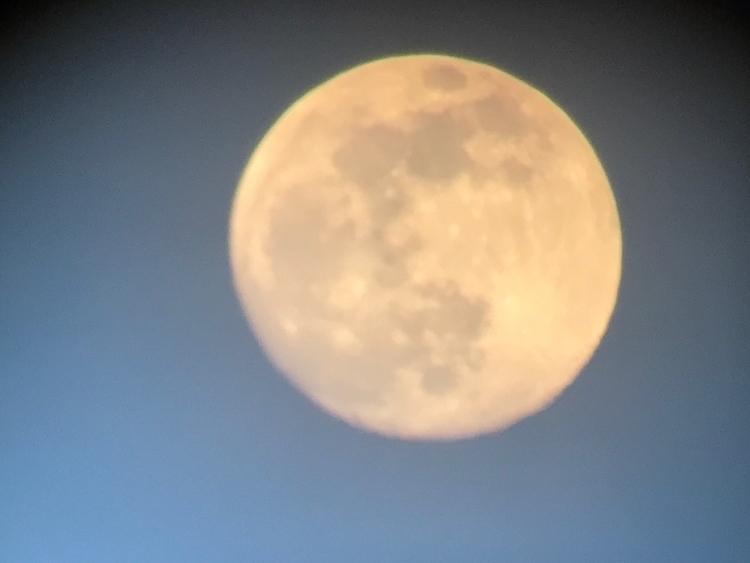 moon - laodicean | ello