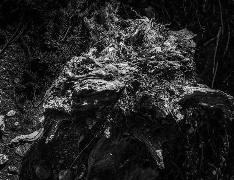 Zoth Ommog Photography - Digita - fenrizwolfe | ello