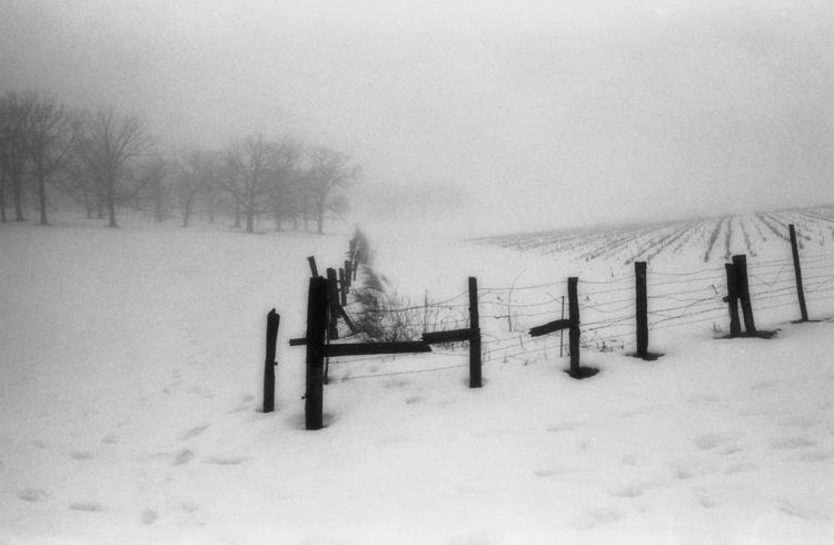 Country winter - capnvideo   ello