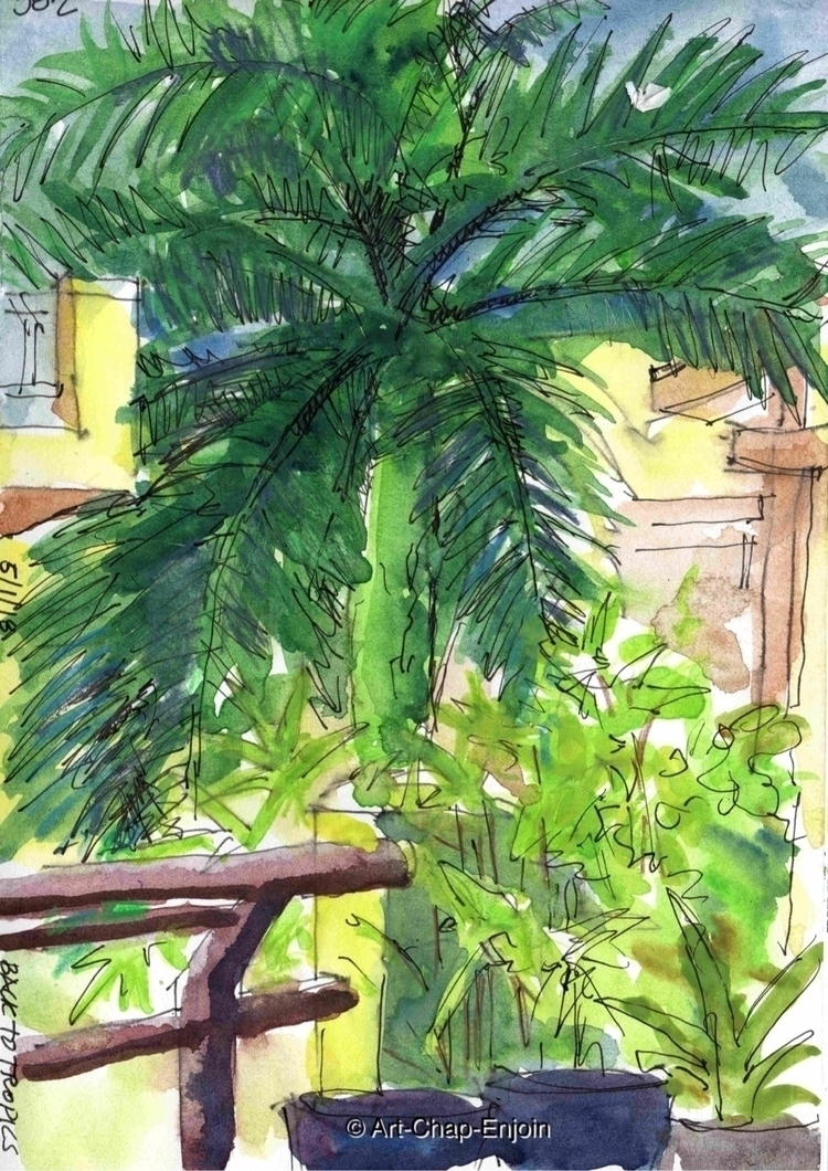 - tropics enjoying home light c - artchapenjoin | ello