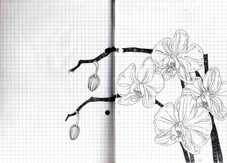 art, illustration, drawing, flowers - linsshit | ello