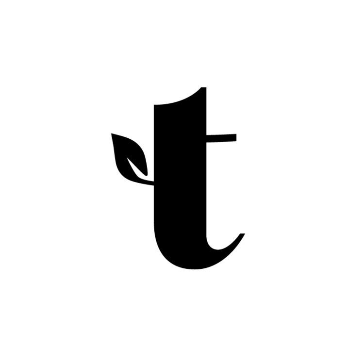Timberlog logo - op-01 ideas, 4 - salomo   ello
