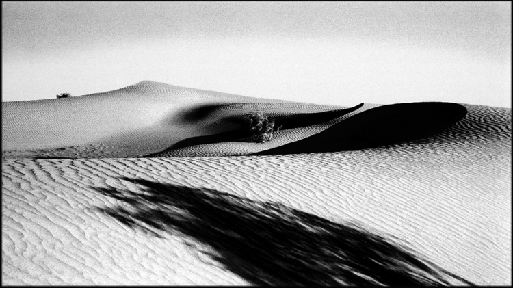 Shadows dunes, Karakumy desert - tajiko | ello