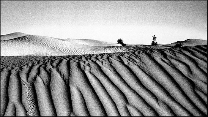 Karakumy Desert. Turkmenistan.  - tajiko | ello