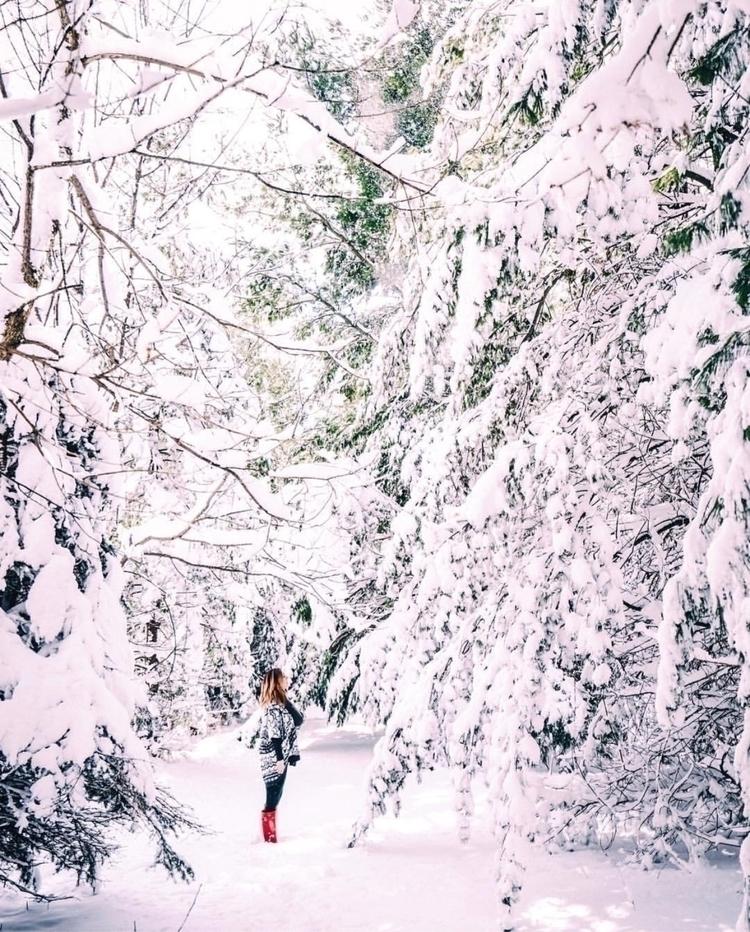 sony, sonyalpha, landscape, winter - lenonjames | ello