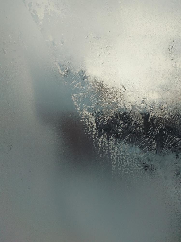Ice feathers - andreigrigorev   ello