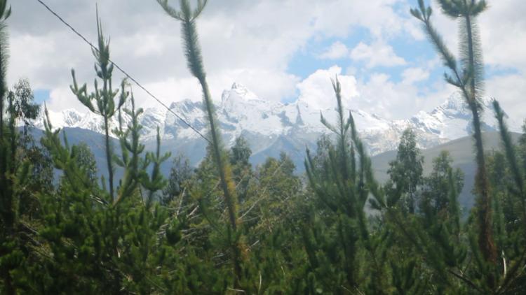 Ankash, Peru. 3 days ayahuasca  - apocalypsetao | ello