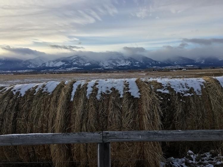 aesthetics, hay, roundbales, montana - johnsilenth | ello