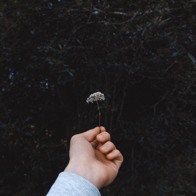 Fragile soul - photography, summer - fabianlundkvist | ello