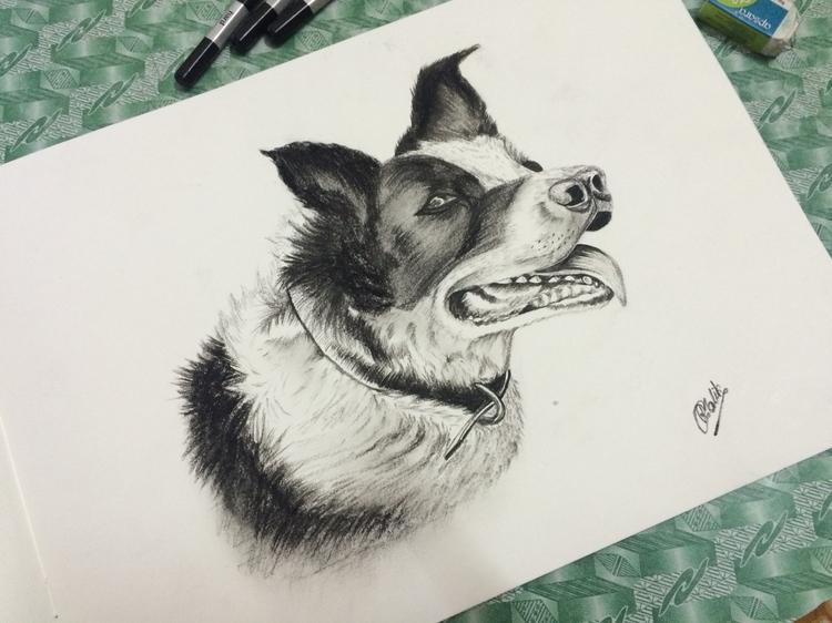 Collie - Art, Drawing, Sketch, Charcoal - rakeshmalik91 | ello