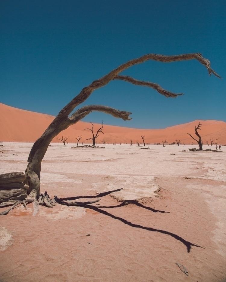 Deadvlei! Travel - Desert, Landscape - louwlemmer | ello