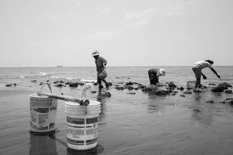 Fisher Baishatun, Taiwan - fitzgerald_00 | ello