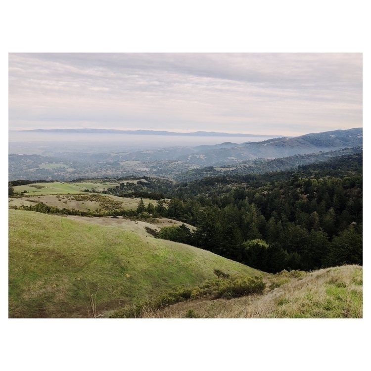 woodside, california - optoutside - laynemyrdyth | ello