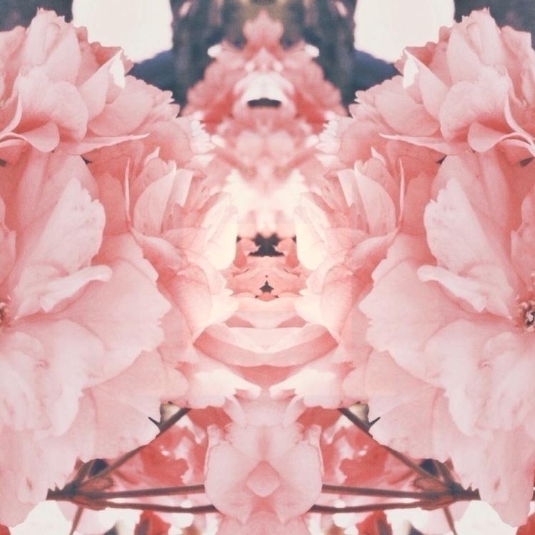 floral, design, flowers - martonious_monk | ello