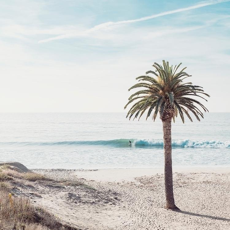 Topanga Surf Los Angeles - davbear | ello