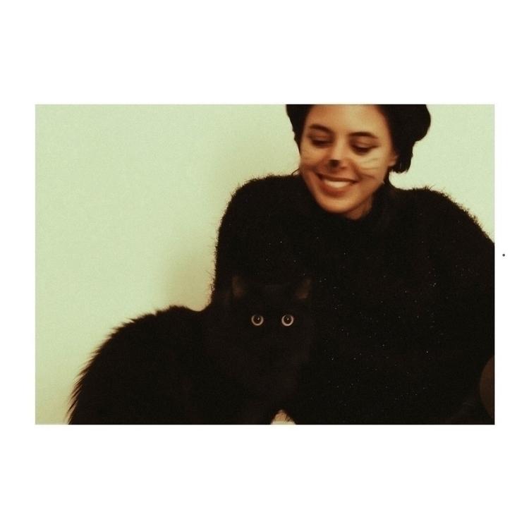 twocats, cats - saeed   ello