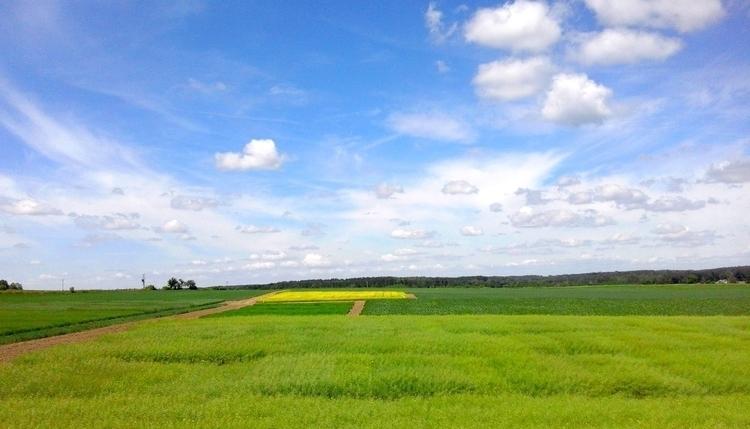 Podlasie - landscape, landscapephotography - uula_s | ello