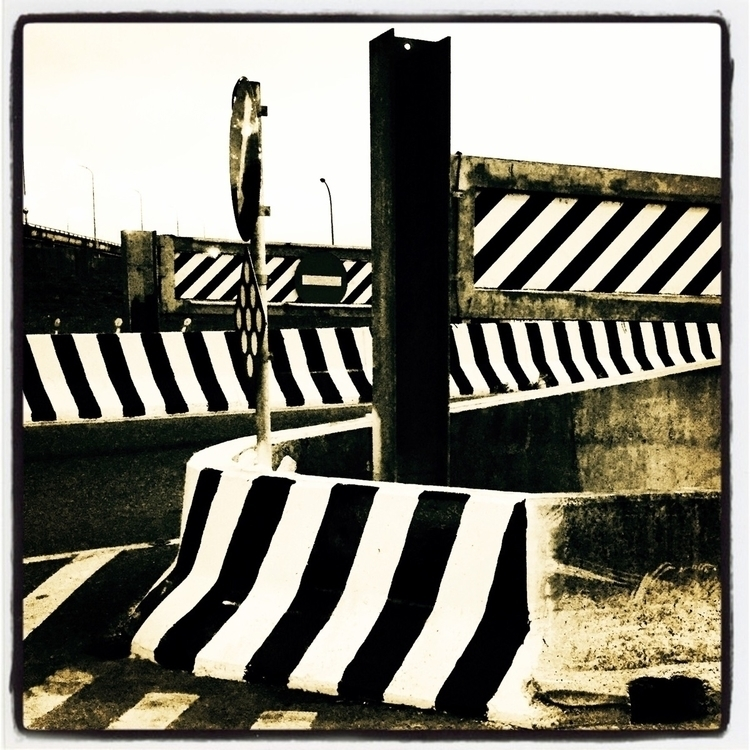 zebra - bjl710806 | ello