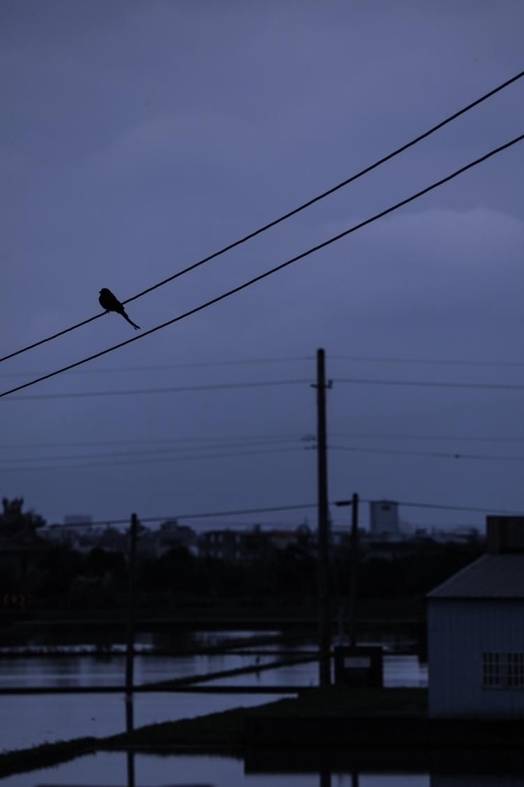 Stay, commemorate - poetry, photo - chenyiru   ello
