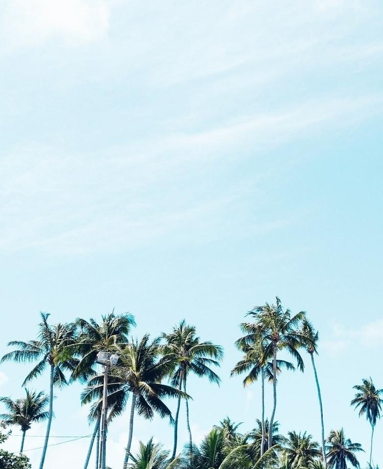 minimalism - kayomelo | ello