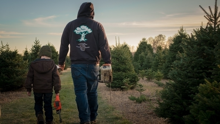 boy, dad saws hunt perfect tree - breezeblocksphoto | ello