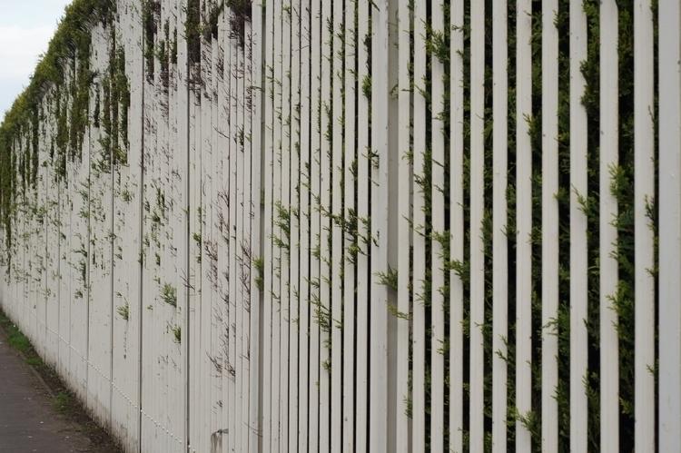Fence, Govan, Glasgow, Scotland - yannick_glasgow | ello