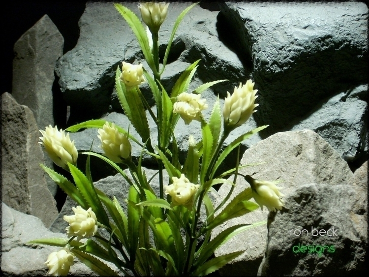 protea plant | artificial aquar - ronbeckdesigns | ello
