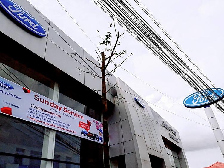 Dịch Vụ Ford Bình Định - lamtungbtv | ello