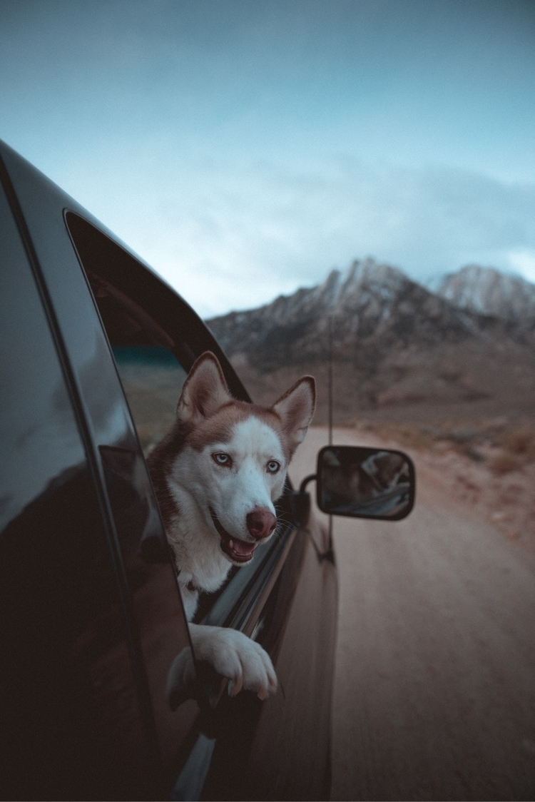 Taryn begging truck watch sun r - tnellly | ello