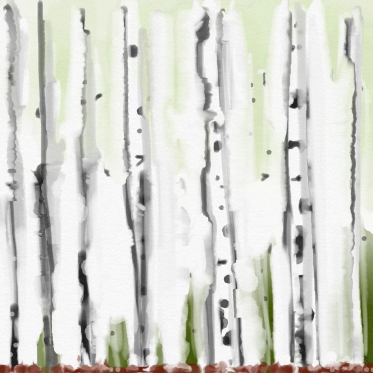 Birch Submitted Design Seeds - mlvmt | ello