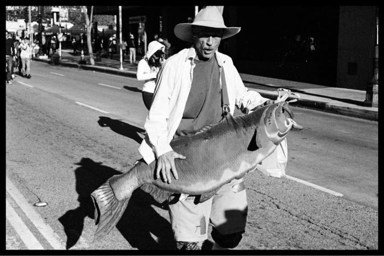 man fish - leica, 35mm, film - studlysteadman   ello