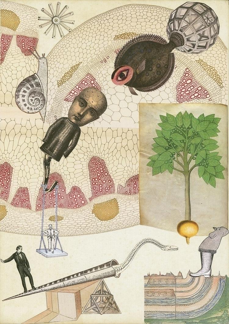 Olga Lupi working collage mediu - olga_lupi | ello