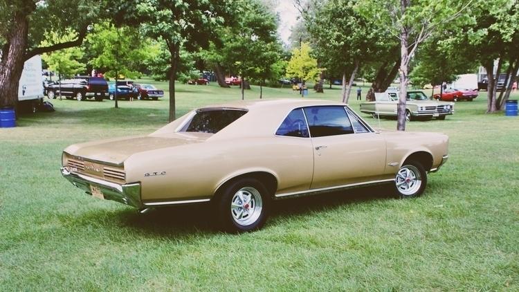 Pontiac GTO - pontiacgto, cars, royaloak - kcirwerdna | ello