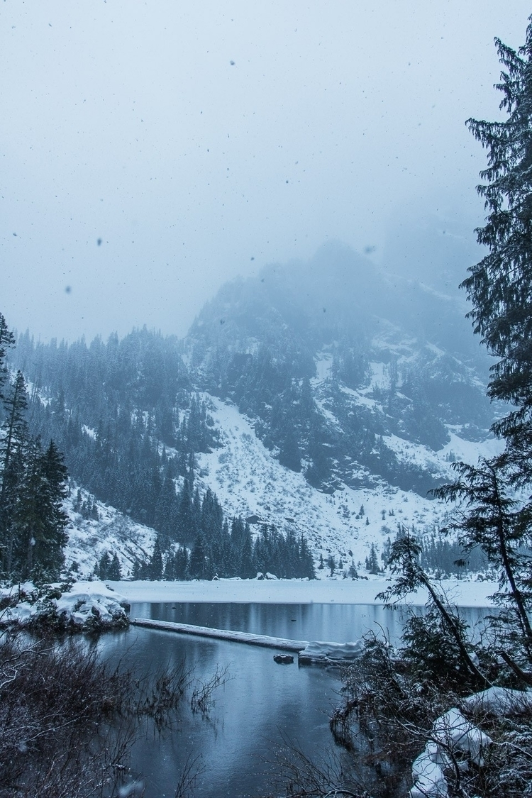 Heather Lake Winter edition - Washington - jjtomas | ello