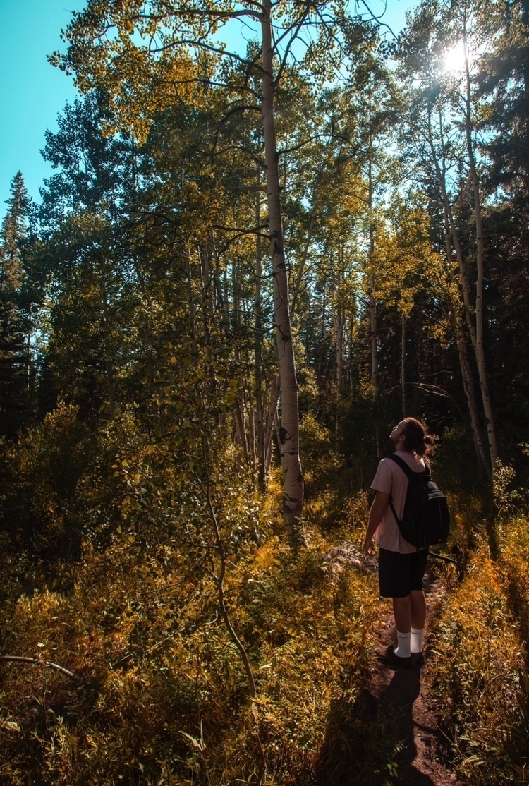 hiking grand mesa colorado - jonathanswecker | ello