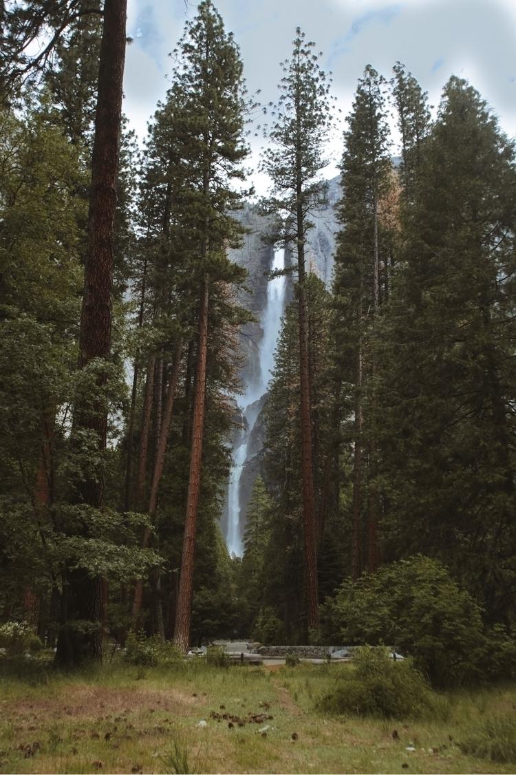 Yosemite National Park. Califor - mike_sap | ello