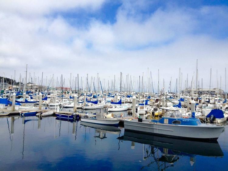 Monterey, California - california - dear_fia | ello
