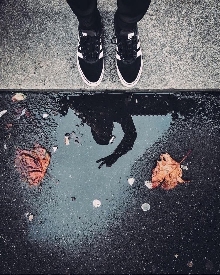 curb follow Ello - sf, reflection - siberianvolk | ello