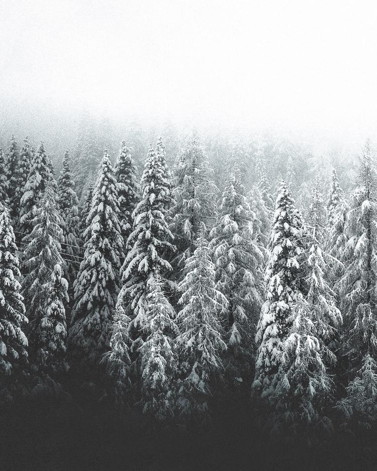 mood heart. Finnish, time snow  - douglasfir | ello