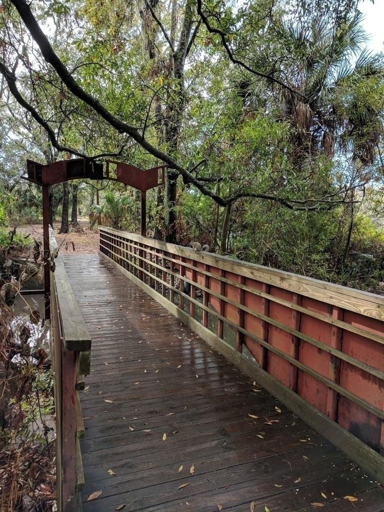 Al Lopez Park Tampa, Florida - trails - fibarra813 | ello