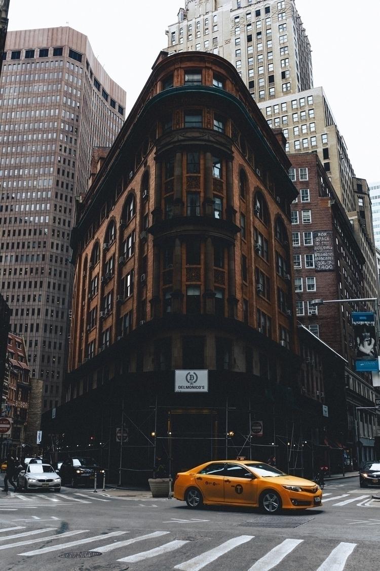 photography - newyork, nyc, ny, trip - tsuby | ello