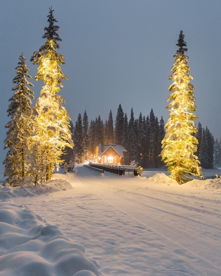 winter cabin vibez - braystoro | ello