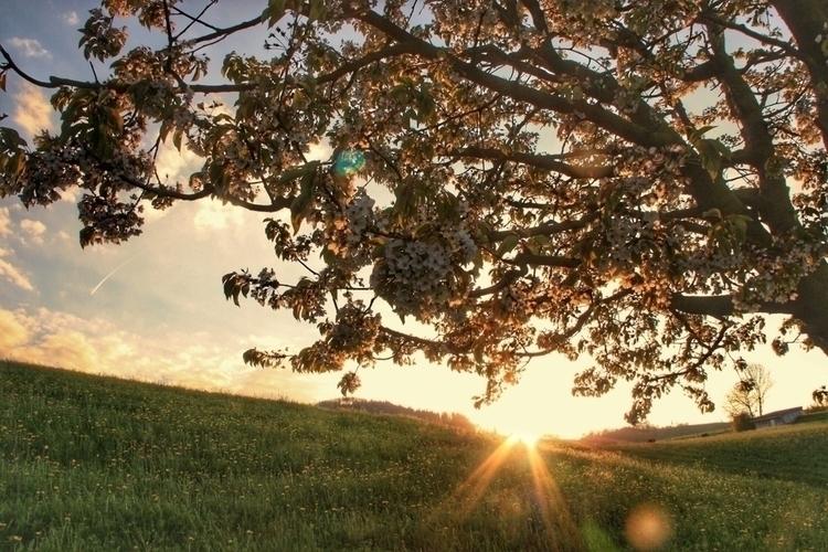 Spend time Nature ~~~ days, set - travel-cristellicious | ello