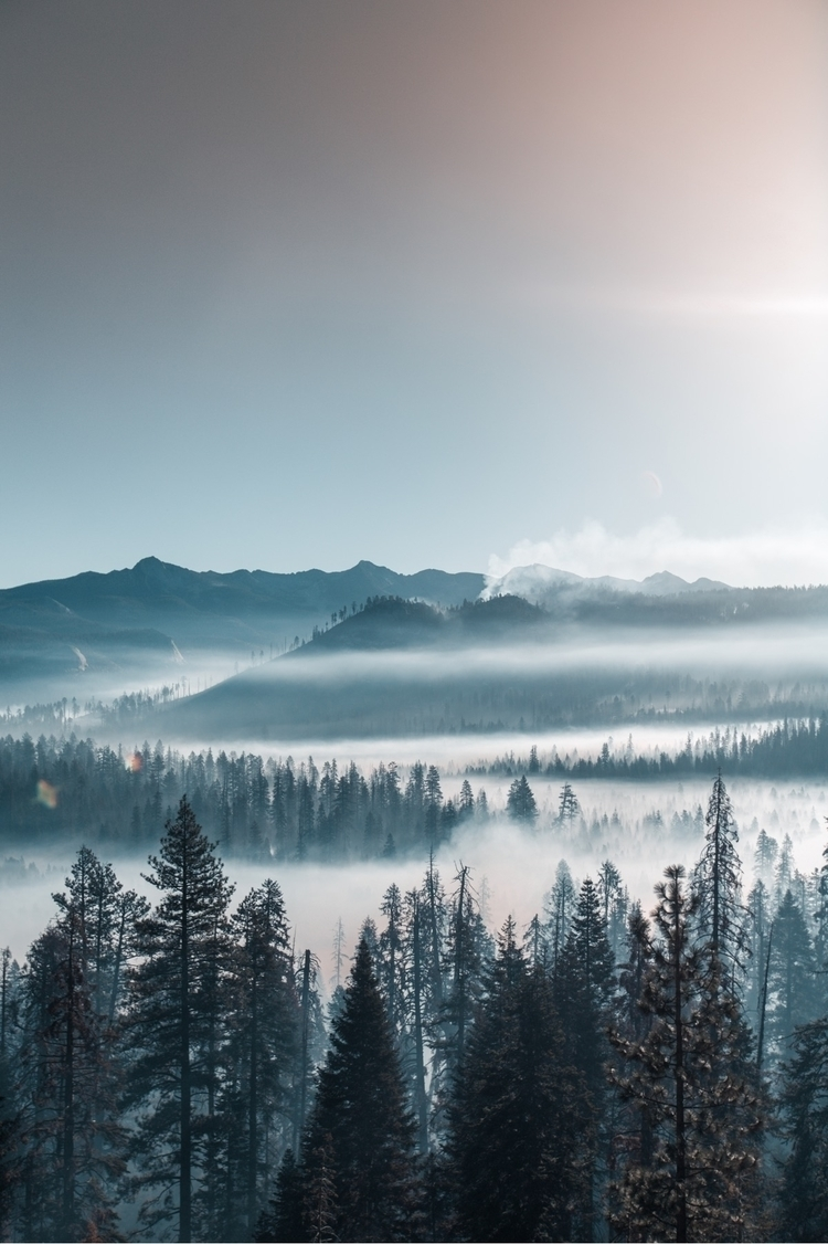 beautiful morning Yosemite - ello - johngrs | ello