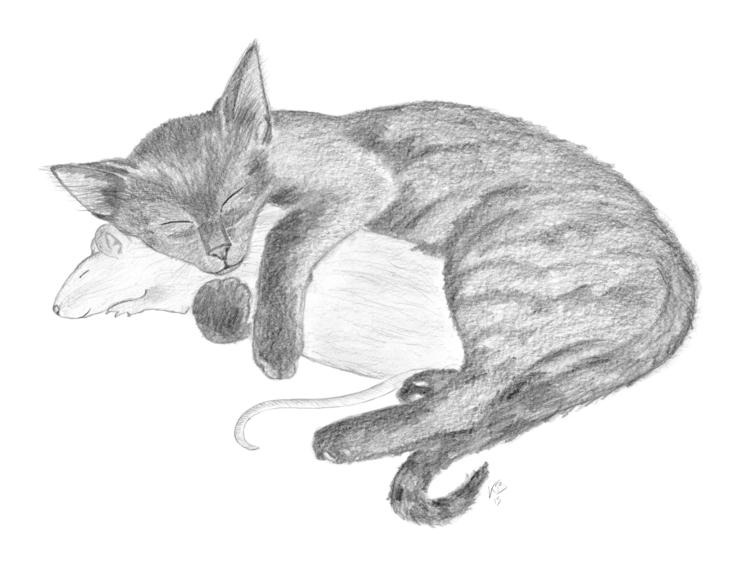 unusual love.  - illustration, pencildrawing - unvorbildlich | ello