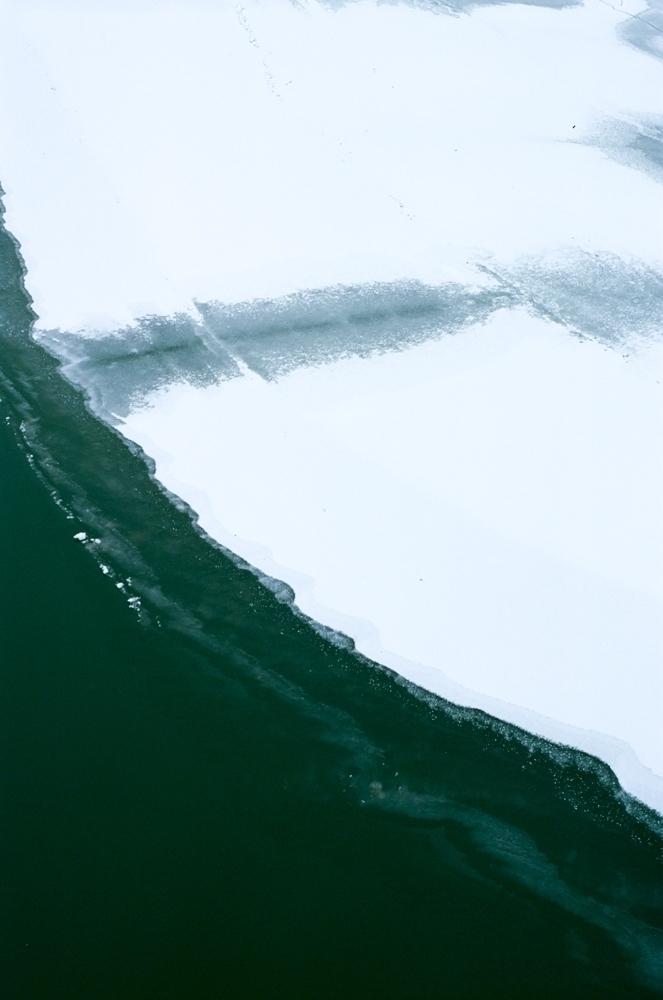 m58.4 Alaska Palms / Jamie McRa - alaskapalms | ello